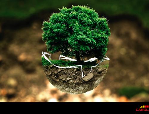 Reparar antes que sustituir, un compromiso de Carglass con el medio ambiente